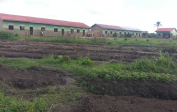 Agricultural project and training for the students right around the school buildings