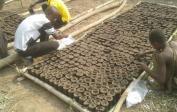 Schuldirektor Philemon (links) & Helfer pflanzen 1100 Palmnusssamen für 7 Hektar Plantage an.