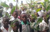 Schüler auf dem Weg, die Akaziensetzlinge einzupflanzen