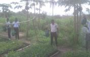 Schüler gießen die Akazienbaumschule - 1.000 Setzlinge
